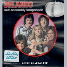 Bay City Rollers Lampshade